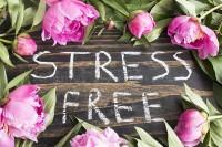 STRESS FREE – come liberare il corpo e la mente dagli effetti negativi dello stress.